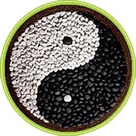 alimentazione cinese specialisti della dietetica cinese aassociazione vedanta
