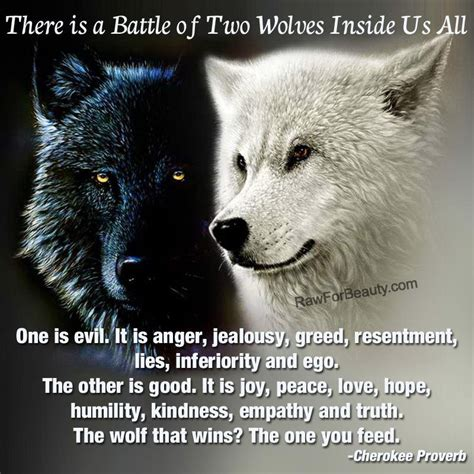 the 24th sometimes the black sheep wins books feed the wolf quotes quotesgram