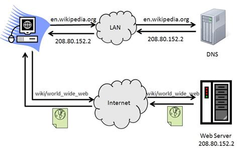 Ip Dns Lookup Web