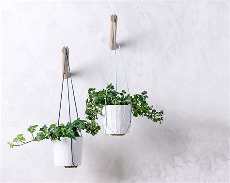 plant wall hangers indoor 17 best ideas about indoor plant hangers on
