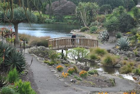 Auckland Botanical Gardens Just A Stroll In The Park Picture Of Auckland Botanic Gardens Auckland Region Tripadvisor