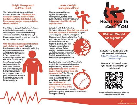 weight management brochure health brochure bmi and weight management