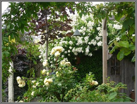 Garten Und Landschaftsbau Bremerhaven 4291 garten und landschaftsbau bremerhaven page