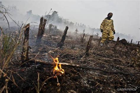 Pisau Hutan satgas redd cari solusi batas wilayah eks plg kalteng