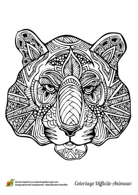 Dessin à colorier d'une tête de tigre