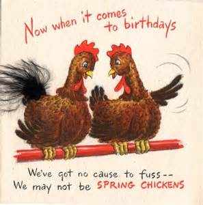 chicken birthday card 17 best images about chickens on the rooster