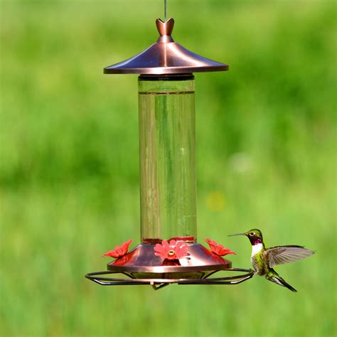 Copper Bird Feeders Pet 710b Copper Glass