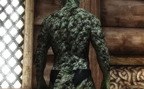 male dragonic argonian textures 4k 2k sos and vanilla grayfox s game art 리텍 male dragonic argonian textures