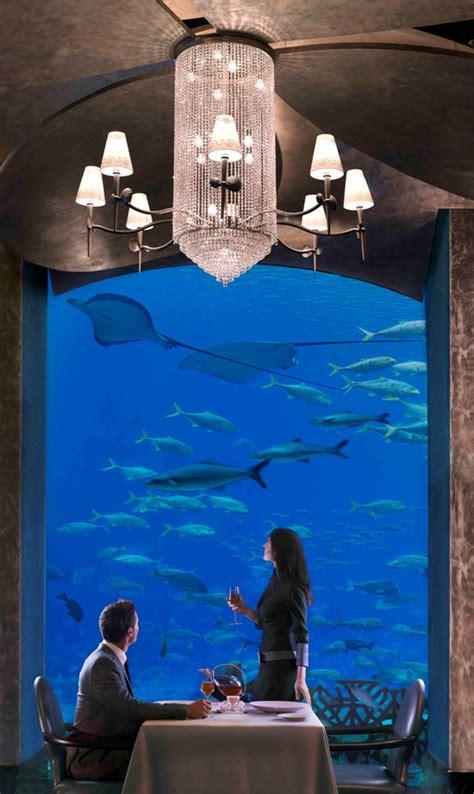 atlantis resort underwater rooms free photo underwater views at hotel atlantis the palm dubai