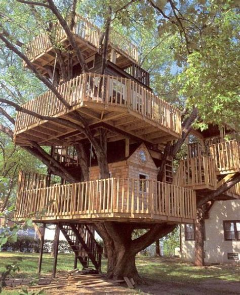 the world s most fantastic treehouses