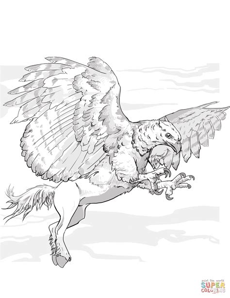 hippogriff coloring page dnd hippogriff coloring page free printable coloring pages