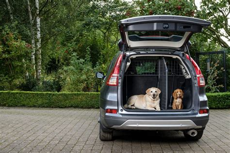 dog car barrier   cargo divider   car car advice carsguide