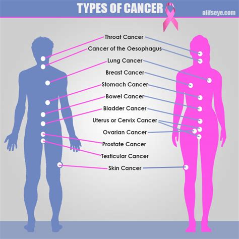 types of cancer pictures types of cancer