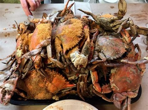 bethesda crab house crabs picture of bethesda crab house bethesda tripadvisor