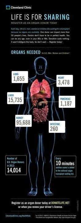 Cleveland Clinic Detox Diet by 28 Best Kidney Transplant Images On
