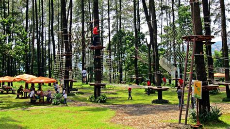 Di Bali tempat wisata keluarga di bali treetop adventure bedugul expos 233