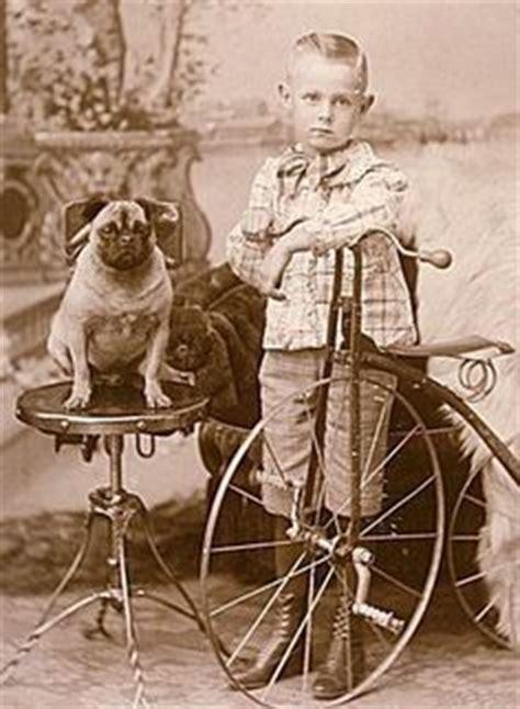 antique pug pug stuff vintage on pug dogs pugs and pug