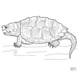Snapping Turtle Coloring Pages Alligator Snapping Turtle Coloring Page Free Printable