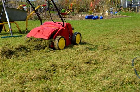 Wann Vertikutiert Den Rasen 5343 by Wann Vertikutieren Und Wie Wird 180 S Gemacht Akkurasenm 228