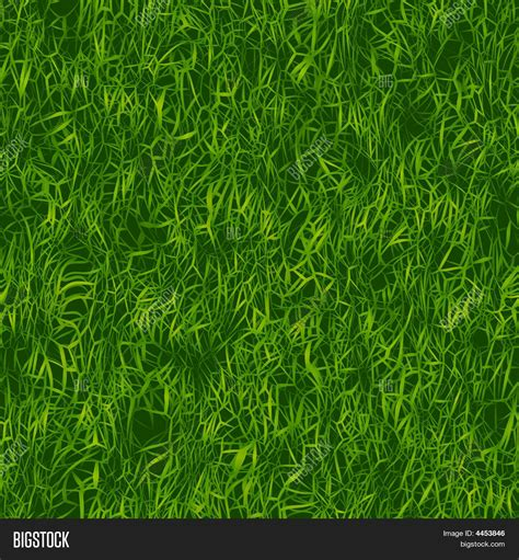 image pattern grass green grass pattern image photo bigstock