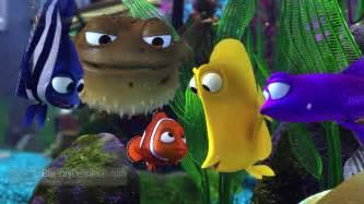 Pics Photos   Finding Nemo Fish Image Aquarium Wallpaper