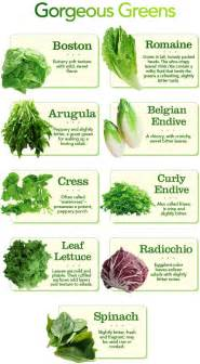 different types of lettuce and other salad greens fyi