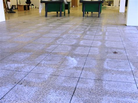 Simple Ways to Clean Terrazzo Floor Tile   Southbaynorton