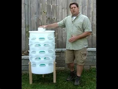vertical gardening 50 plants in a 55 gallon barrel while