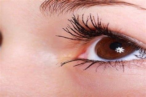 Maskara Bulu Mata ini dia 5 cara melentikkan bulu mata tanpa maskara alami