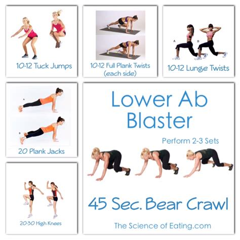 lower abs workouts by mackenzie wright musely