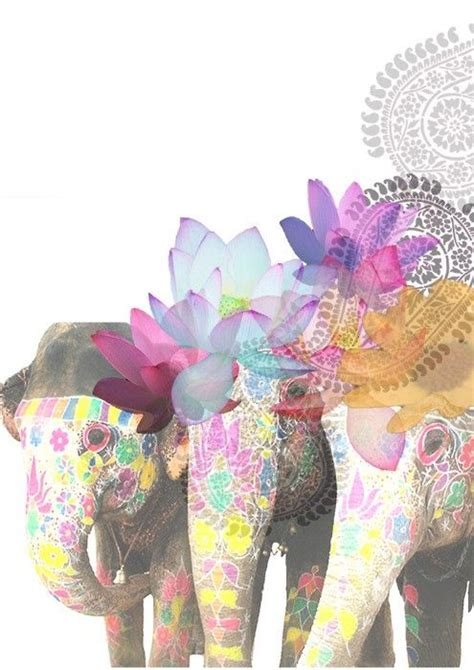 colorful elephant wallpaper 38 best cute wallpapers images on pinterest wallpapers