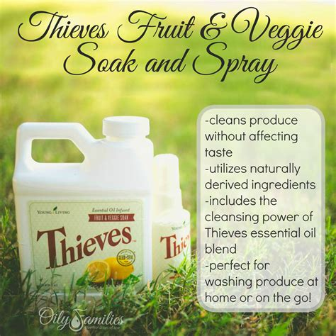 using thieves in your kitchen the oily home companion veggie soak perfect choice when cleaning larger amounts of