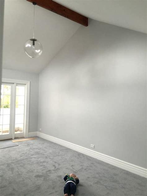 what color carpet with light gray walls carpet vidalondon