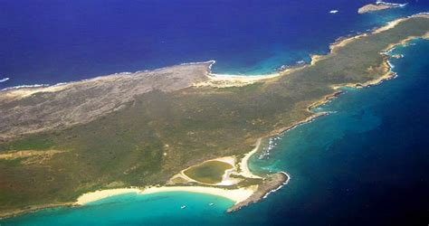 puppy island islands for sale island anguilla caribbean
