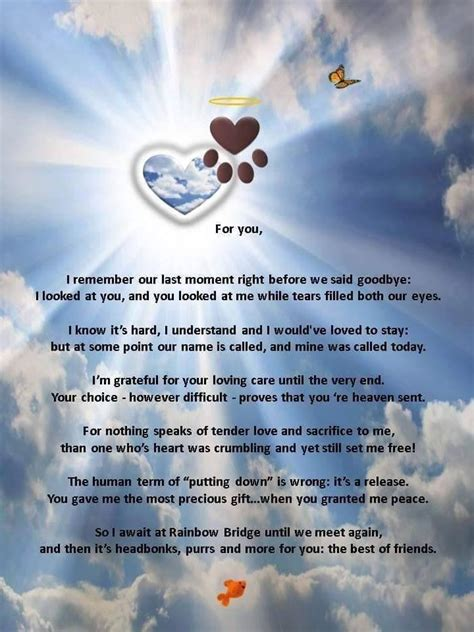comforting quotes about death of a dog 17 best pet loss quotes on pinterest dog loss quotes