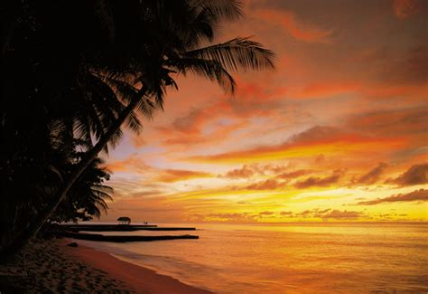 sunset wall mural tobago sunset wall mural salacious sound