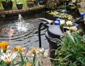 6 Best Pond Filters   2019 Reviews (Top Picks) & Guide