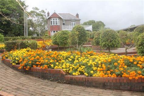Bundaberg Botanical Gardens Sights On An Early Morning Stroll Picture Of Bundaberg Botanic Gardens Bundaberg Tripadvisor