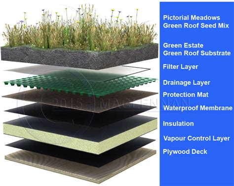green roofs a useful solution to embellish our home and green roof membrane installation uk services