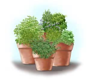 Spinach Container Garden - herb garden in containers bonnie plants