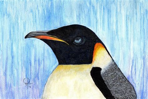 painting penguin blue eyed penguin painting by doug hiser