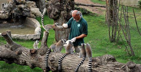 costo ingresso zoo di pistoia dal bioparco al museo dei bambini itinerario romano per