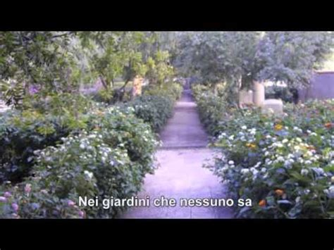 nei giardini nessuno renato zero nei giardini nessuno sa lyrics