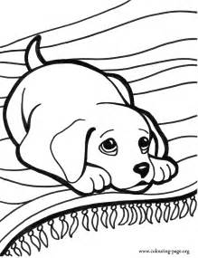 puppy coloring page coloring pages of puppies and kittens coloring home