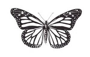 papillon dessin recherche google a imprimer papillons