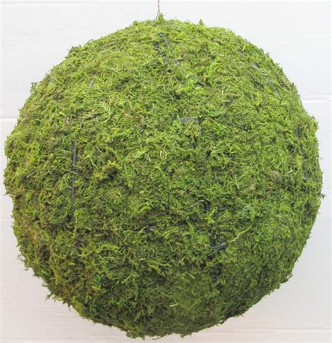 topiary sphere topiary sphere with moss filling 163 124 99