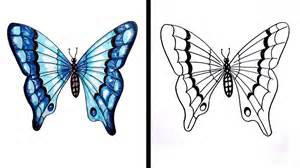 How To Draw Butterfly How To Draw A Butterfly Easy Step By Step Drawing For