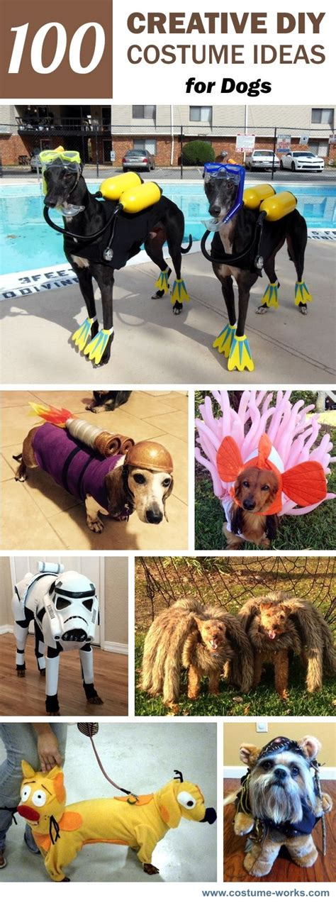 images  diy halloween costumes  pinterest