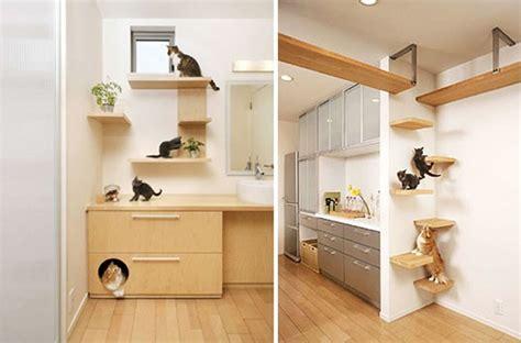 design works home is where the cat is a casa dos sonhos de um gato gateiro