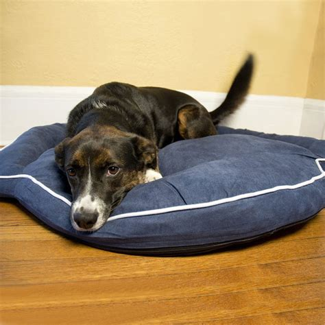 dog bolster bed bolster dog bed denim in pet beds